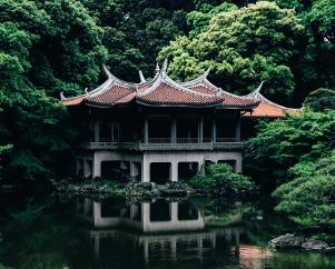Пошаговый МК «китайская роспись» для начинающих (1 часть, 1 урок)